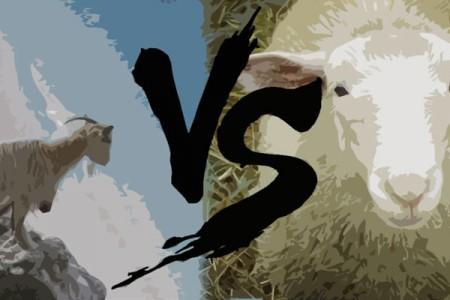 Αρνί VS κατσίκι: Τι να επιλέξω;