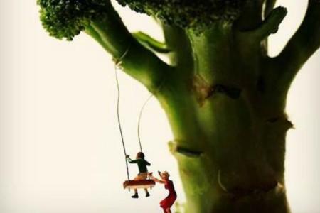 Μπρόκολο: Το απόλυτο λαχανικό του φθινοπώρου μπαίνει στο μικροσκόπιο!