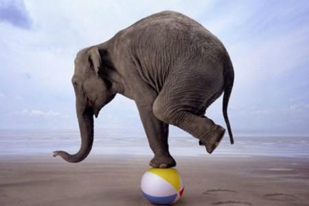 Έτσι θα κάνεις πιο ισορροπημένη τη ζωή σου!