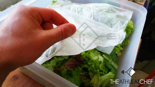 SALAD-PAPER-COVER-1