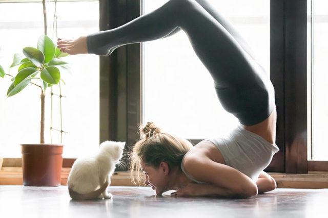 fitnesstrend1